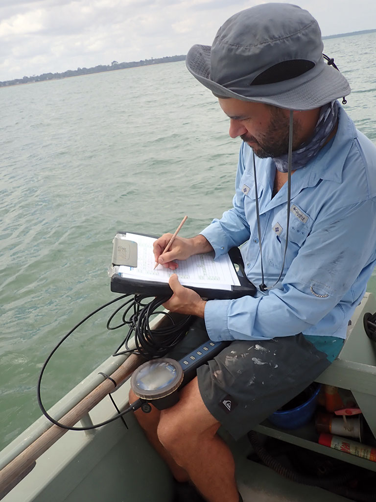 Logging seagrass at Weipa